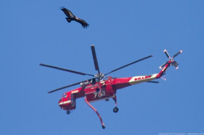 fbp_204_skycrane_firefighting_helicopter_2994.jpg