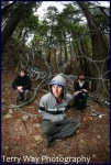 Animal Collective, lost in the coils, 2009...