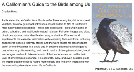 birds among us.jpeg